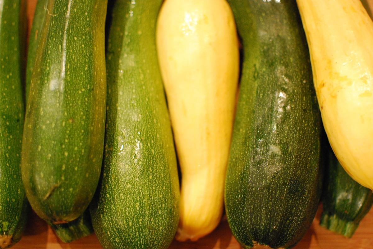 A zucchini a day . . .