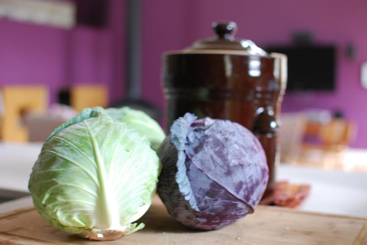 Cabbage, Salt & Gramma's Secret Ingredient