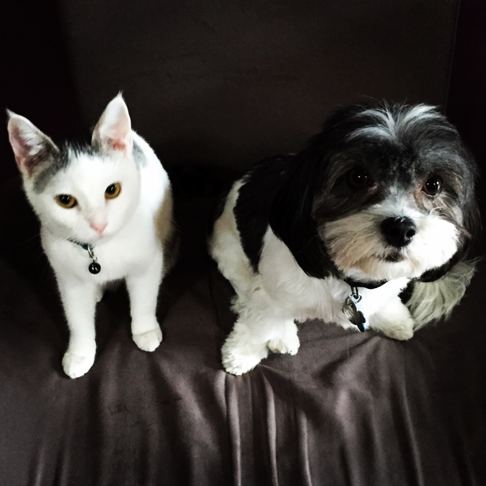 Scooter & Gracie